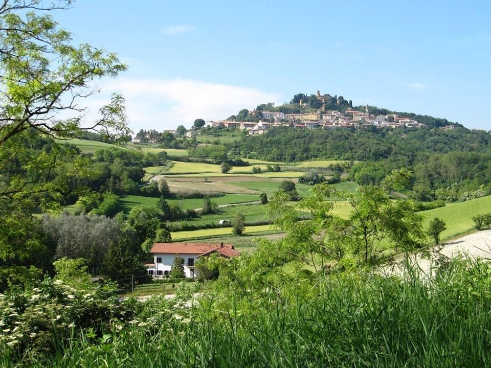 collina-monferrato